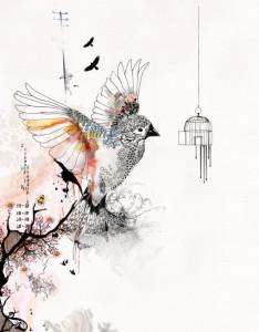 kako nacrtati pticu