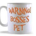 Laskate li svom šefu?